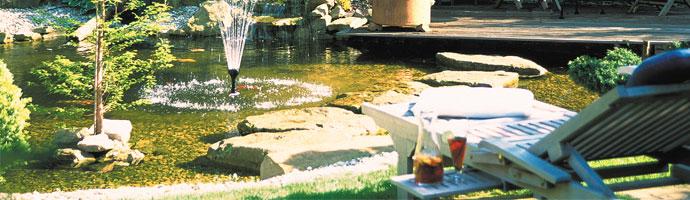 jardin aquatique sur valenciennes